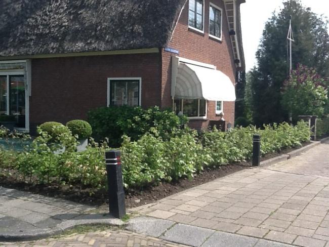 Aanplant tuin met Groene Beuk 80-100 cm